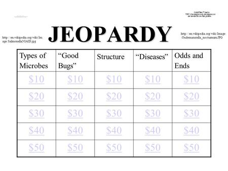 "JEOPARDY Types of Microbes ""Good Bugs"" Structure""Diseases"" Odds and Ends $10 $20 $30 $40 $50  age:SalmonellaNIAID.jpg"