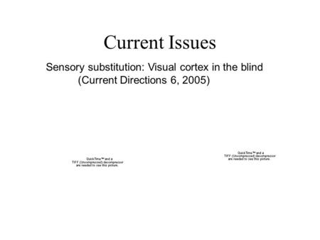 Current Issues Sensory substitution: Visual cortex in the blind (Current Directions 6, 2005)