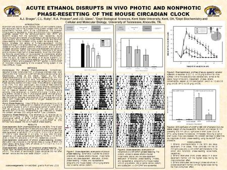 ACUTE ETHANOL DISRUPTS IN VIVO PHOTIC AND NONPHOTIC PHASE-RESETTING OF THE MOUSE CIRCADIAN CLOCK A.J. Brager 1, C.L. Ruby 1, R.A. Prosser 2, and J.D. Glass.