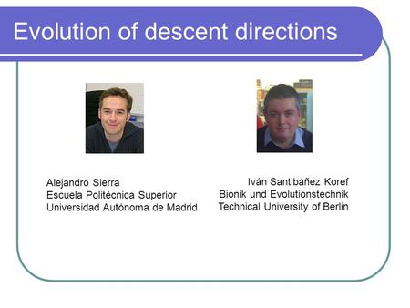 Evolution of descent directions Alejandro Sierra Escuela Politécnica Superior Universidad Autónoma de Madrid Iván Santibáñez Koref Bionik und Evolutionstechnik.