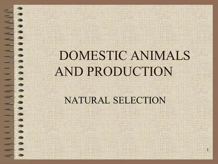1 DOMESTIC ANIMALS AND PRODUCTION NATURAL SELECTION.