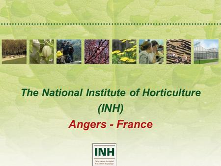 The National Institute of Horticulture (INH) Angers - France.