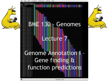 BME 130 – Genomes Lecture 7 Genome Annotation I – Gene finding & function predictions.