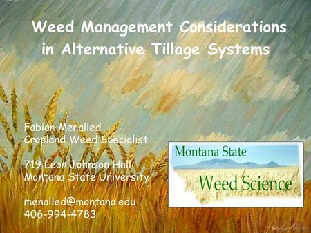 Weed Management Considerations in Alternative Tillage Systems Fabián Menalled Cropland Weed Specialist 719 Leon Johnson Hall Montana State University