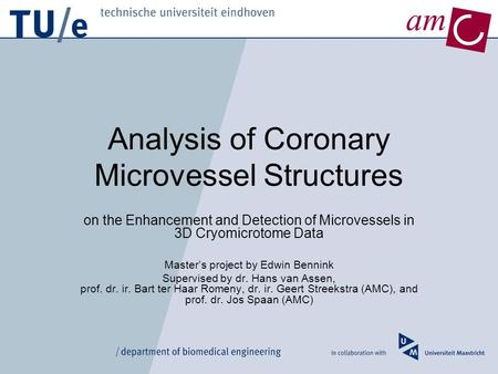 Am Analysis of Coronary Microvessel Structures on the Enhancement and Detection of Microvessels in 3D Cryomicrotome Data Master's project by Edwin Bennink.
