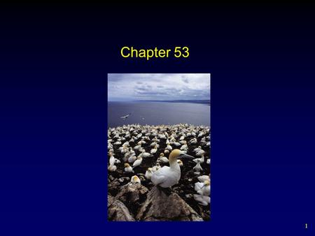 1 Chapter 53. 2 Ecology is the study of how organisms (biotic) interact with each other and their environment (abiotic)