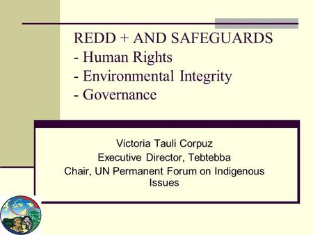 REDD + AND SAFEGUARDS - Human Rights - Environmental Integrity - Governance Victoria Tauli Corpuz Executive Director, Tebtebba Chair, UN Permanent Forum.