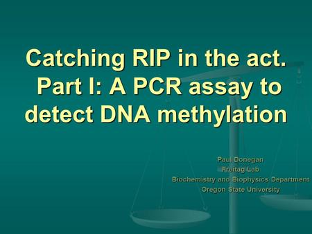 Catching RIP in the act. Part I: A PCR assay to detect DNA methylation Paul Donegan Freitag Lab Biochemistry and Biophysics Department Oregon State University.