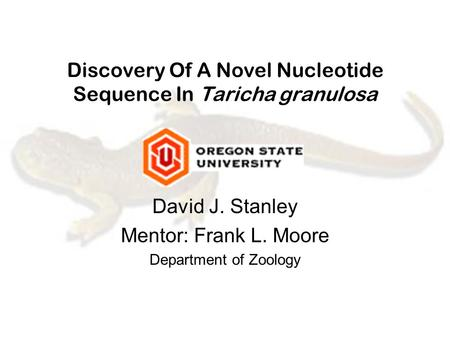 Discovery Of A Novel Nucleotide Sequence In Taricha granulosa David J. Stanley Mentor: Frank L. Moore Department of Zoology.