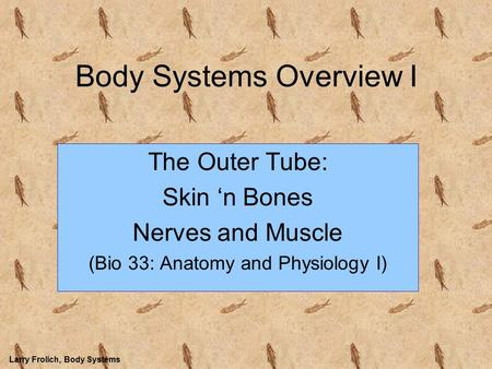 Larry Frolich, Body Systems Body Systems Overview I The Outer Tube: Skin 'n Bones Nerves and Muscle (Bio 33: Anatomy and Physiology I)