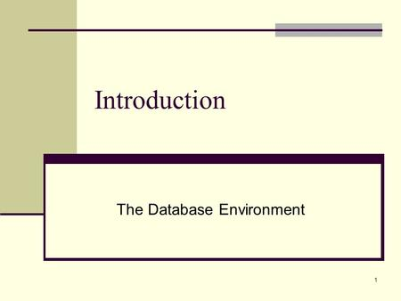 1 Introduction The Database Environment. 2 Web Links Google General Database Search Database News Access Forums Google Database Books O'Reilly Books Oracle.