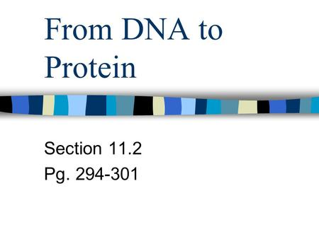 From DNA to Protein Section 11.2 Pg. 294-301. There are 3 types of RNA: 1. messenger RNA (mRNA) – The RNA that brings information from the DNA in the.