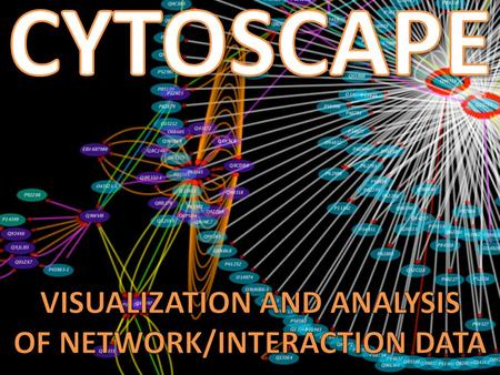 WHAT IS CYTOSCAPE? WHAT CAN I DO WITH IT? HOW DO I IMPORT DATA? HOW DO I VISUALIZE DATA? HOW DO I ANALYZE DATA? WHERE CAN I LEARN MORE?