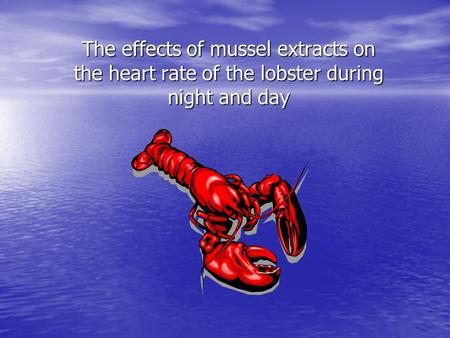 The effects of mussel extracts on the heart rate of the lobster during night and day.