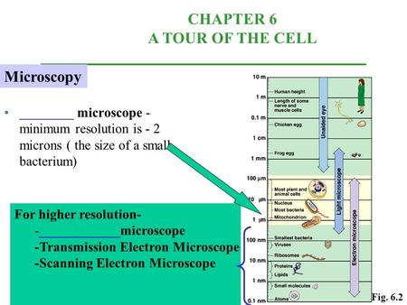 ________ microscope - minimum resolution is - 2 microns ( the size of a small bacterium) CHAPTER 6 A TOUR OF THE CELL For higher resolution- -____________microscope.