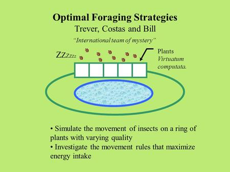 "Optimal Foraging Strategies Trever, Costas and Bill ""International team of mystery"" Plants Virtuatum computata. Simulate the movement of insects on a ring."