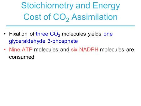 Stoichiometry and Energy Cost of CO2 Assimilation