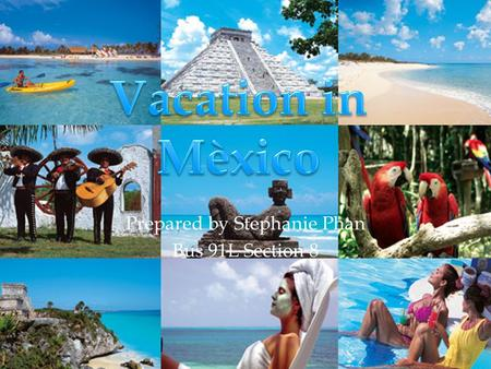 1 Prepared by Stephanie Phan Bus 91L Section 8. 2 I'm having so much fun in Mexico.