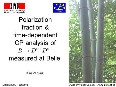 Polarization fraction & time-dependent CP analysis of measured at Belle. March 2008 – Geneva Swiss Physical Society – Annual meeting Kim Vervink.