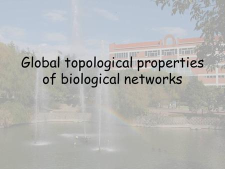 Global topological properties of biological networks.