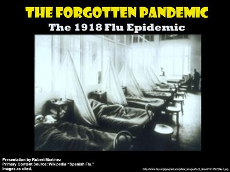 The Forgotten Pandemic The 1918 Flu Epidemic  Presentation by Robert Martinez Primary.
