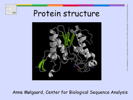 CENTER FOR BIOLOGICAL SEQUENCE ANALYSISTECHNICAL UNIVERSITY OF DENMARK DTU Protein structure Anne Mølgaard, Center for Biological Sequence Analysis.