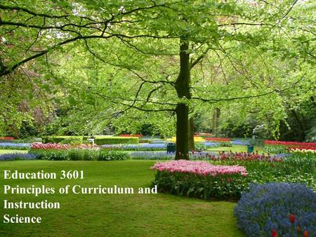 Education 3601 Principles of Curriculum and Instruction Science.