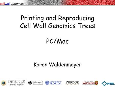 Supported by the NSF Plant Genome Research and REU Programs Printing and Reproducing Cell Wall Genomics Trees PC/Mac Karen Waldenmeyer.