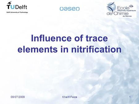 09/07/2009Khelifi Faiza 1 Influence of trace elements in nitrification.
