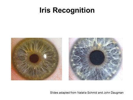 Iris Recognition Slides adapted from Natalia Schmid and John Daugman.