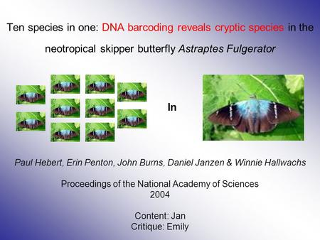 Ten species in one: DNA barcoding reveals cryptic species in the neotropical skipper butterfly Astraptes Fulgerator Paul Hebert, Erin Penton, John Burns,
