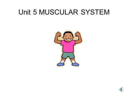 Unit 5 MUSCULAR SYSTEM 2. the 3 Types of MUSCLE TISSUE SMOOTH- in walls of organs, 1 nucleus, involuntary, slowest CARDIAC- heart, rythmical, involuntary,