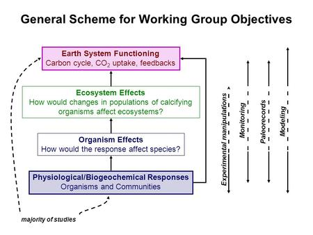 General Scheme for Working Group Objectives Physiological/Biogeochemical Responses Organisms and Communities Ecosystem Effects How would changes in populations.