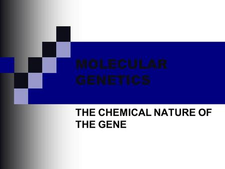 MOLECULAR GENETICS THE CHEMICAL NATURE OF THE GENE.