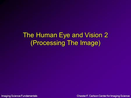 The Human Eye and Vision 2 (Processing The Image)