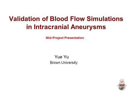 Validation of Blood Flow Simulations in Intracranial Aneurysms Yue Yu Brown University Mid-Project Presentation.