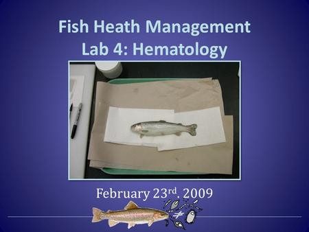 Fish Heath Management Lab 4: Hematology February 23 rd. 2009.