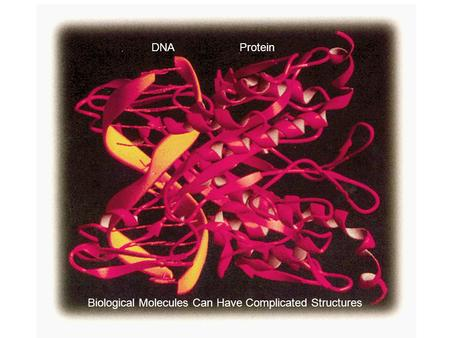 Biological Molecules Can Have Complicated Structures DNAProtein.