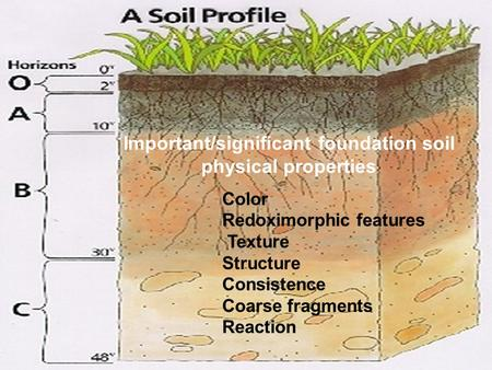 1 Important/significant foundation soil physical properties Color Redoximorphic features Texture Structure Consistence Coarse fragments Reaction.
