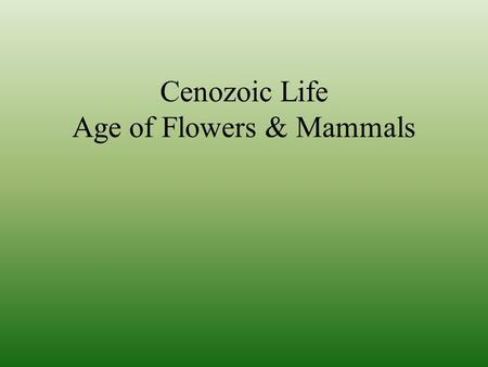 Cenozoic Life Age of Flowers & Mammals. Oceans Similar to Mesozoic… …with new predators.