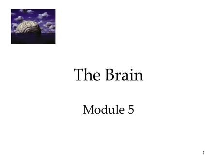 The Brain Module 5 Psychology 7e in Modules.