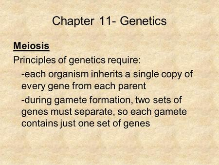 Chapter 11- Genetics Meiosis Principles of genetics require: -each organism inherits a single copy of every gene from each parent -during gamete formation,