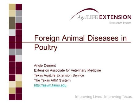 Foreign Animal Diseases in Poultry Angie Dement Extension Associate for Veterinary Medicine Texas AgriLife Extension Service The Texas A&M System