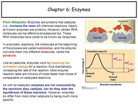 Chapter 6: Enzymes From Wikipedia: Enzymes are proteins that catalyze (i.e., increase the rates of) chemical reactions. Nearly all known enzymes are proteins.