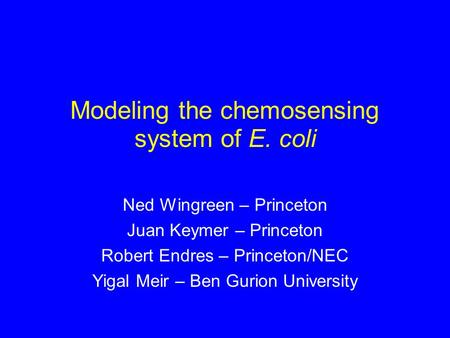 Modeling the chemosensing system of E. coli