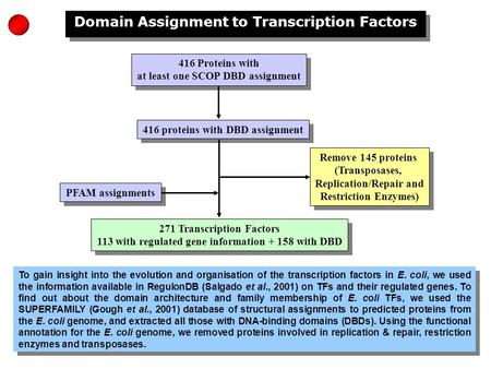 Domain Assignment to Transcription Factors 416 Proteins with at least one SCOP DBD assignment 416 Proteins with at least one SCOP DBD assignment PFAM assignments.