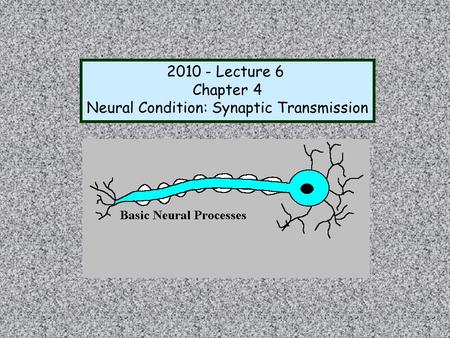 Neural Condition: Synaptic Transmission