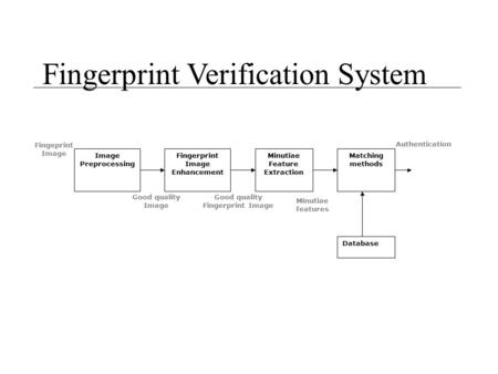 Good quality Fingerprint Image Minutiae Feature Extraction
