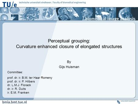 Perceptual grouping: Curvature enhanced closure of elongated structures By Gijs Huisman Committee: prof. dr. ir. B.M. ter Haar Romeny prof. dr. ir. P.