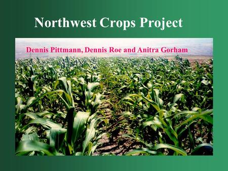 Northwest Crops Project Dennis Pittmann, Dennis Roe and Anitra Gorham.